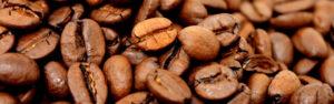 14: Caffè dal Mondo